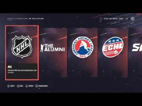 NHL 19 hut pack opening awesome PULLs