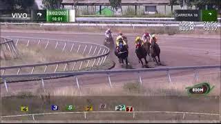 Vidéo de la course PMU PREMIO GESTO DE HONOR HANDICAP