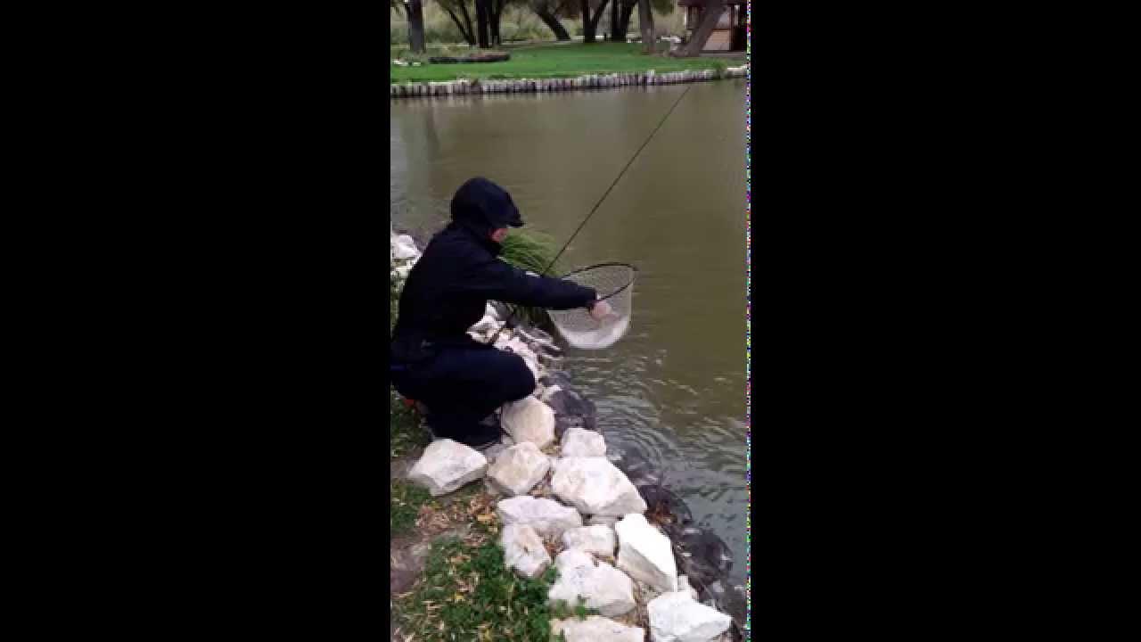 денис вихров ловля форели видео