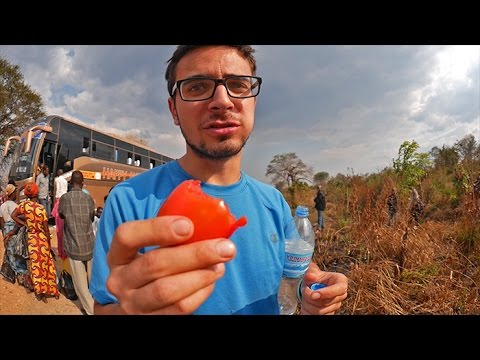 The Strangest Tomato Market in the World