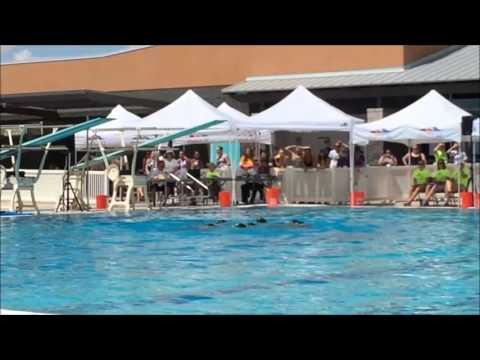 2016 U.S. Synchronized Swimming National Champions - Lindenwood University