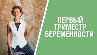 Первый триместр беременности: особенности, влияние на образ жизни и здоровье женщины. 16+