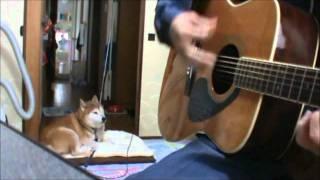 新田恵利さんのソロデビュー曲「冬のオペラグラス」を弾き語りしました...