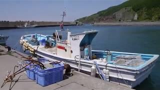 増毛 岩老漁港(第1種)
