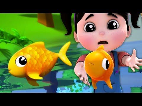 catturato un pesce vivo | numeri Canzone per bambini| contando i numeri | Once I Caught A Fish Alive