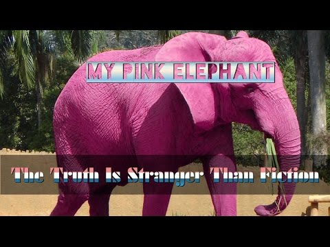 My Pink Elephant - The Truth Is Stranger Than Fiction On Flat Earth ...