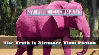 My Pink Elephant - The Truth Is Stranger Than Fiction On Flat Earth