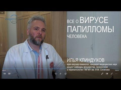 Все о вирусе папилломы человека | Роль вируса папилломы человека в развитии рака шейки матки