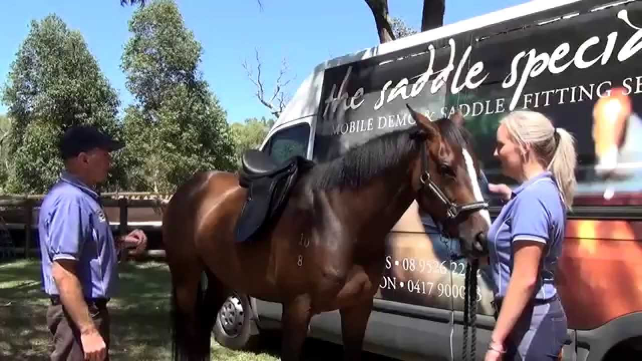 Saddle Fitting - Online Horse Supplies