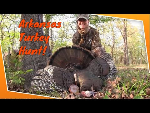 Turkey Hunting - Arkansas Spring Turkey Hunt