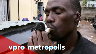Bunny-hugging metalheads in Botswana
