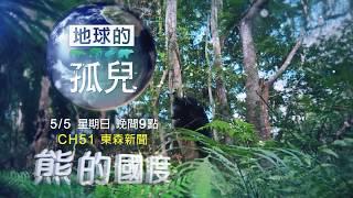 【預告】南安小熊要回家 九個月野訓過程全紀錄
