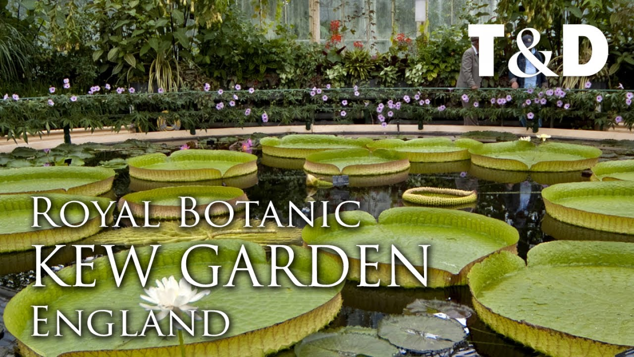 Royal Botanic Gardens, Kew - England Attractions - Travel & Discover
