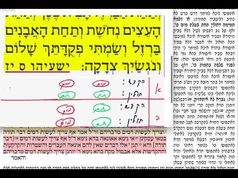 הדף היומי מסכת תמורה דף כז Daf yomi Temurah daf 27