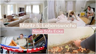 Moritz lacht 😭 Wohnzimmer dekorieren & neuer Anstrich | Isabeau
