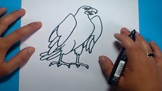 Como dibujar un aguila paso a paso 2 | How to draw an eagle 2