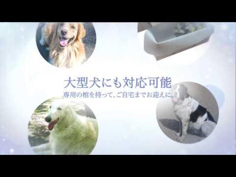 ペット 火葬 大阪 ペット く よう ほたる の 里 動物 霊園