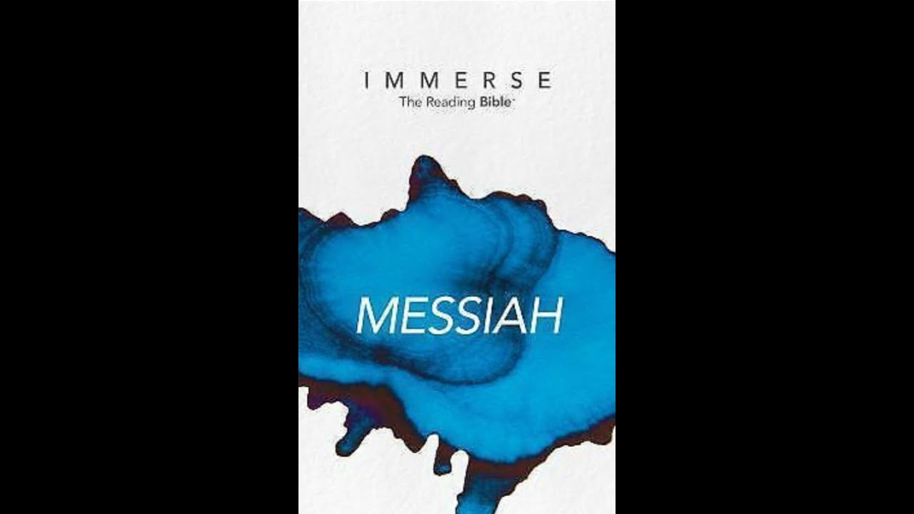 Introduction to Immerse