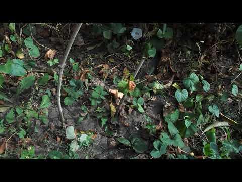 видео ответ  каналу MARKET - ANDREY