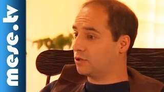 Lázár Ervin: A kék meg a sárga (mesefilm, esti mese gyerekeknek)