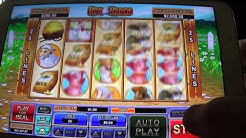 FREE Hen House Casino Gameplay 4 Mobile & Online