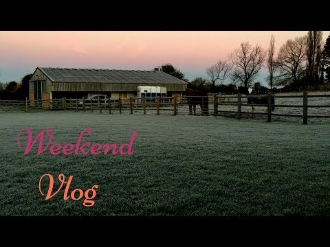 Weekend Vlog : Zip Wire, Little Mix and the Poneos !