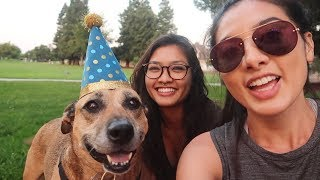 WE THREW OUR DOG A BIRTHDAY PARTY !!!