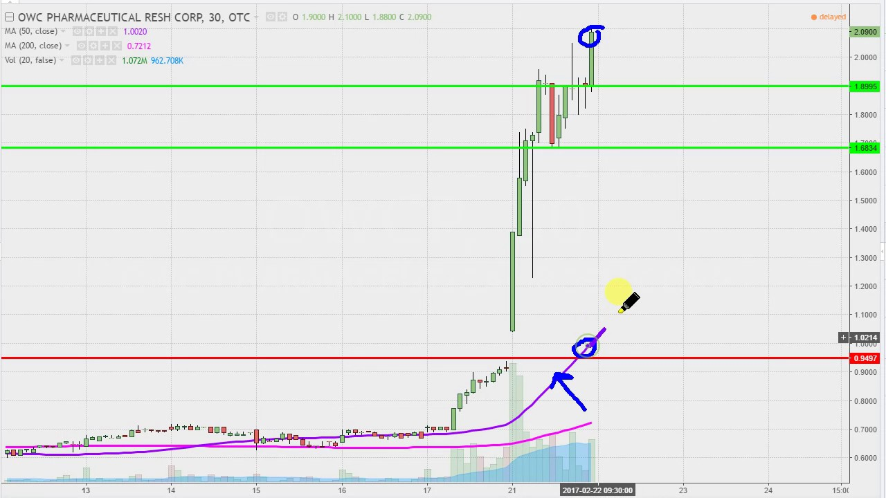 Owc Pharmaceutical Research Corp Owcp Stock Chart Technical Ysis For 02 21 17