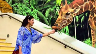 Tour Dubai with Freishia BomanBehram