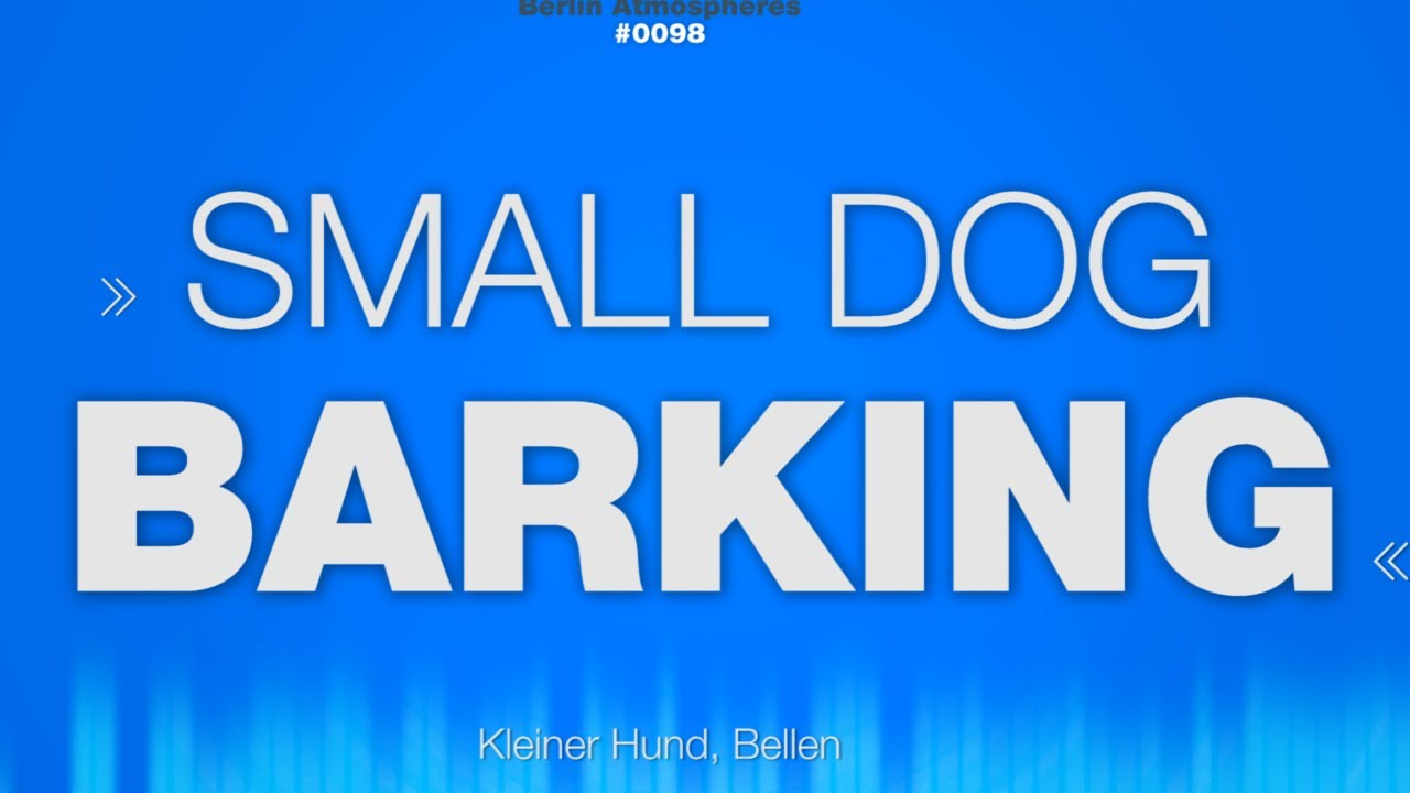 Small Dog Bark Sound Effect