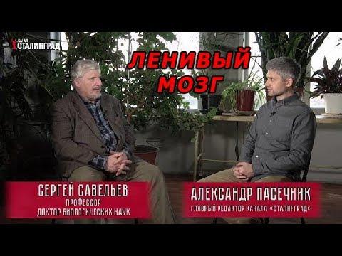С.В. Савельев о биологических основах лени