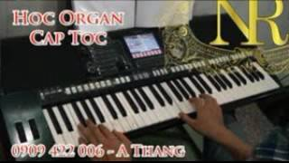 Gimme all your lovin'   ZZ Top [ORGAN]