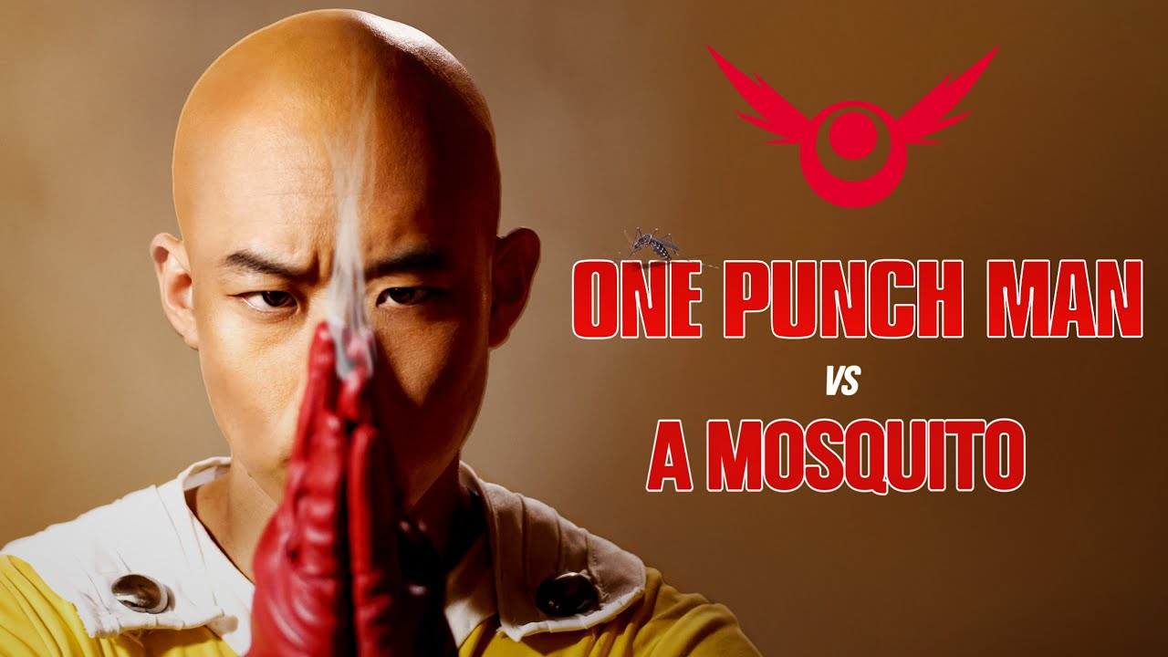Download ONE PUNCH MAN LIVE ACTION - Saitama vs Mosquito   RE:Anime