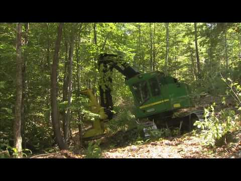 Maine Hardwood Harvests - America's Heartland