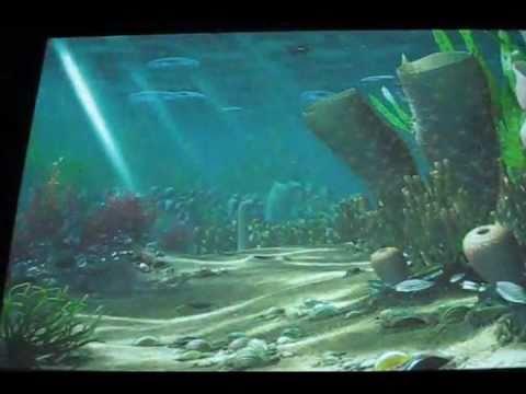 Cambrian Ordovician sea