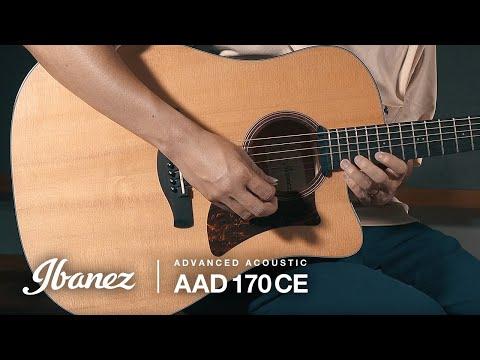 Ibanez AAD170CE-LGS Acoustic Guitar