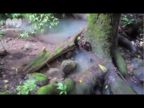 Metropolitan National Park - Panama