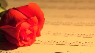 songs bollywood most hindi of soft hits new music nonstop Instrumental latest indian melody best