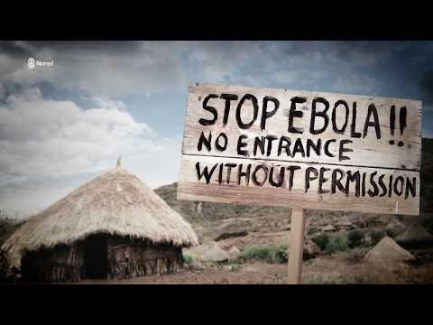 Modern health information systems in Malawi (short version)