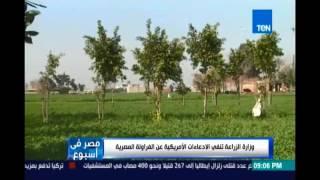 الزراعة تنفي الإدعاءات الأمريكية عن الفراولة المصرية وإصابة أمريكان بالكبد الوبائي نتيجة تناولها
