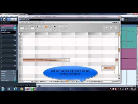 [Cubase] Hướng dẫn sử dụng Melodyne V1.02