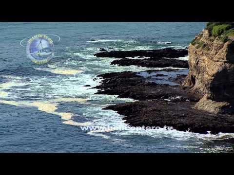 Voando com os Golfinhos (California) em HD / Flying with dolphins in HD