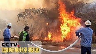 [国际财经报道]热点扫描 玻利维亚:山火肆虐 过火面积超40万公顷| CCTV财经