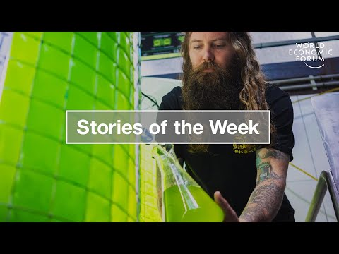 Chinese Train, Artificial Chocolate and Climate Saving Beer | Stories of the Week