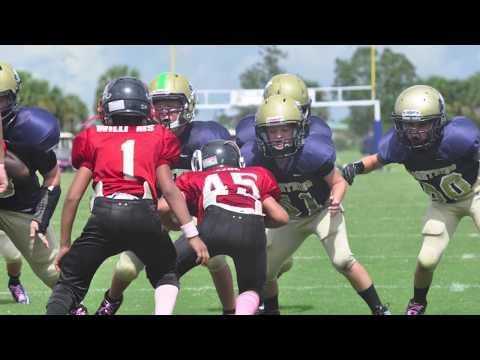 2012 SVYFL - Mighty Mites Season Highlights