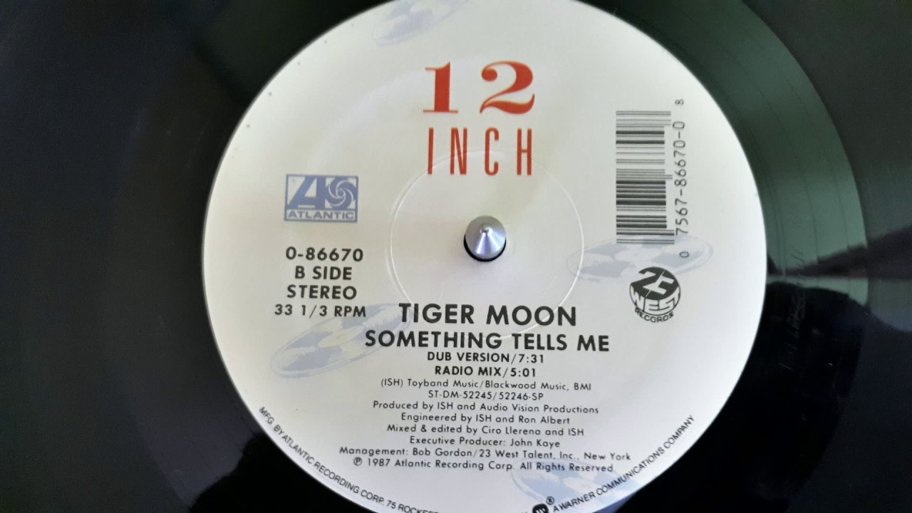 Tiger Moon U2013Something Tells Me (Radio Mix)