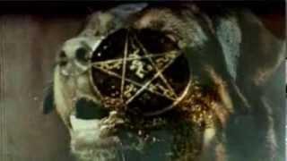 BALINESE BEAST / WHAM JAH Split LP teaser