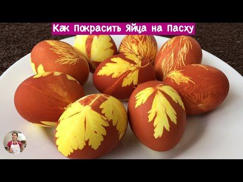 Вкусняшки: Красим яйца. Мастер-классы