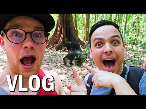 The Most Biologically INTENSE Place On Earth? Costa Rica Adventure (Vlog #35)