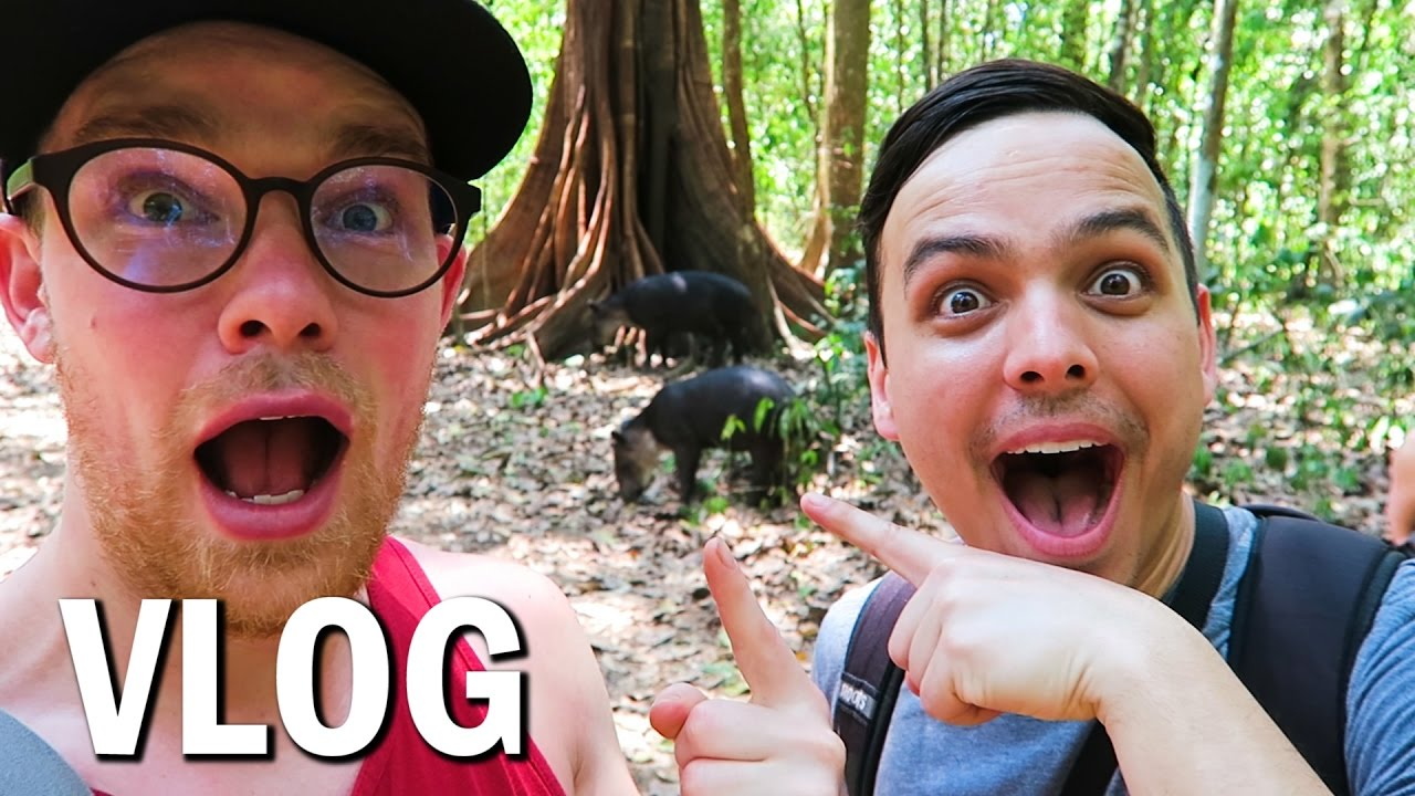 the-most-biologically-intense-place-on-earth-costa-rica-adventure-vlog-35